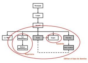 4b – Structure du site web du projet eBBM – Sanderus electronicus.