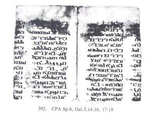 Ms. Sinaï, CPA Sp6 (détail) © Monastère Ste Catherine du Mont Sinaï
